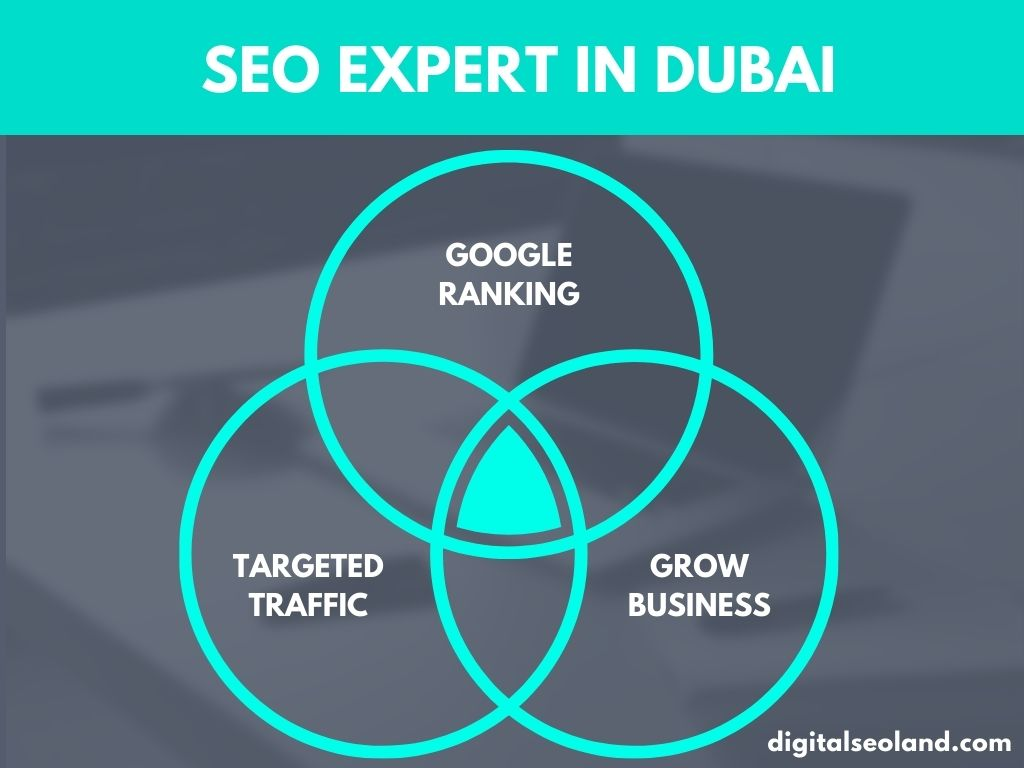 SEO Packages in Dubai